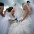 Five beautiful brides — Stock Photo