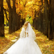 Beautiful young bride in a park — Stock Photo