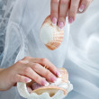 Manicured hands with shell — Stock Photo