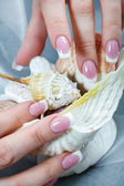 Woman fingernails touching seashell. — Foto Stock