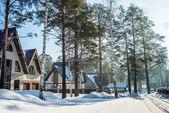 Cottages in winter village — Stock Photo