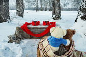 Two teddy bears rest in winter forest with cup of tea — Stock Photo