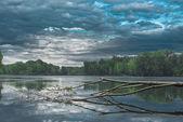 Orman gölü — Stok fotoğraf
