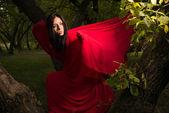 Beautiful woman in red cloak — Stock Photo