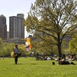 Stok fotoğraf: Girl is walking through Central Park in New York City