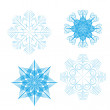 Set of 4 detailed vector snowflakes — Stock Vector