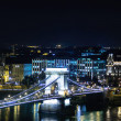 Bridge in Budapest at the night — Stock Photo