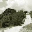 Black & White photo : coontry road turn — Stockfoto