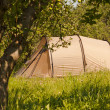 Summer camping - tourist tent in green forest — Stock Photo