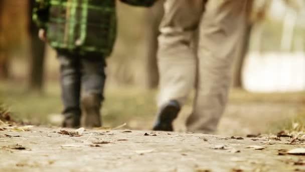 Mots cordialité cher papa pendant marchent automne park — Vidéo