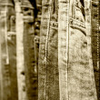 Garment rack with classic Jeans close up shot — Stock Photo