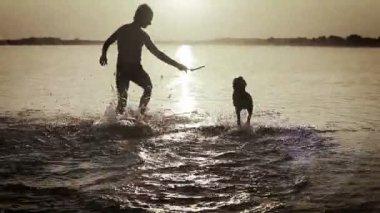 ビーグル子犬サンセット夕焼け波サーファー海に浮気を持つ男 — ストックビデオ