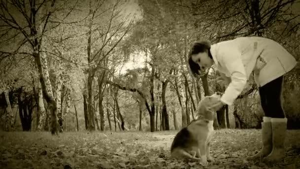 Old Film Effect: Give me five paw my dear Friend — Vidéo