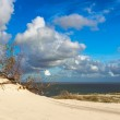 Sand dune in Curonian Gulf — Stock Photo #43454641