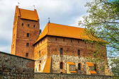 Castle tower and building — Stock fotografie