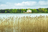 White palace on the lake — Stock Photo