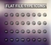 Set van het type bestandsextensie pictogrammen — Stockvector