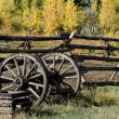 Old wagon wheel in fall — Stock Photo