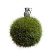 Grass Globe Grenade — Stock Photo
