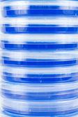 Stapel von blauen Petrischalen — Stockfoto