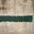 Gree Paint on Wall — Stock Photo
