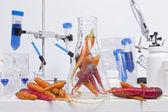Healthy Carrots — Stock Photo