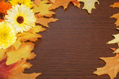 Autumn Frame with Leaves — Stock Photo