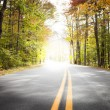 Autumn Drive, Light Tunnel — Stock Photo