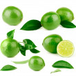 Lots of lime and green leaves — Stock Photo #29439049
