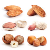 Lots of nuts — Stock Photo