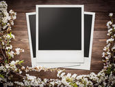 Photo frames with flowers — Stock Photo