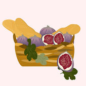 A basket of baguettes and figs — Stock Vector