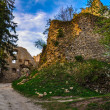 Entry Road and Gate to the Ancient Castle Lietava near Zilina, S — Stock Photo