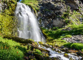 Waterfall with Wildflowers in Crater Lake National Park — Stock Photo