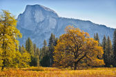 Autumn Colors and Half Dome — Stock Photo