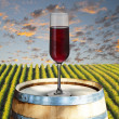 Glass of red wine on wood barrel with vineyard scene in the background — Stock Photo #30158713