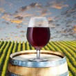 Glass of red wine on wood barrel with vineyard scene in the background — Stock Photo #30158871