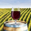 Glass of red wine on wood barrel with vineyard scene in the background — Stock Photo #30158905