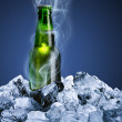 Beer bottle with ice cube — Stock Photo