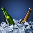 Beer bottles with ice cube — Stock Photo