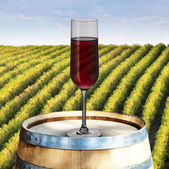 Glass of red wine on wood barrel with vineyard scene in the background — Stock Photo