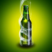 Cold beer bottle with chill smoke — Stock Photo