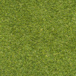 Fresh Grass texture — Stock Photo #30170851