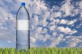 Drinking water bottle — Stock Photo