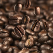 Falling Coffee bean — Stock Photo