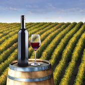 Red wine glass and bottle on wood barrel — Stock Photo