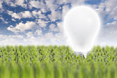 Light bulb on green grass — Stockfoto
