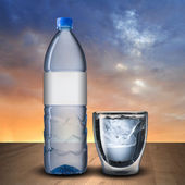 Glass and bottle of water — Stock Photo