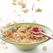 Cereal falling on the bowl — Foto de Stock