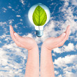 Plant growing inside the light bulb on hand — Stock Photo